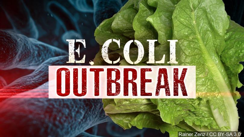 Romaine+Lettuce+and+E+Coli